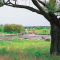 天竜川ラブリバー公園
